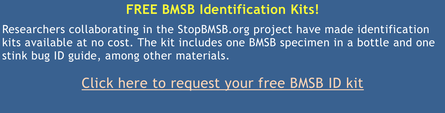 BMSB Identification Kit