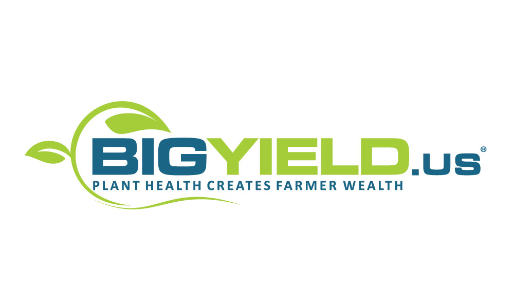 BigYield.us Sponsor