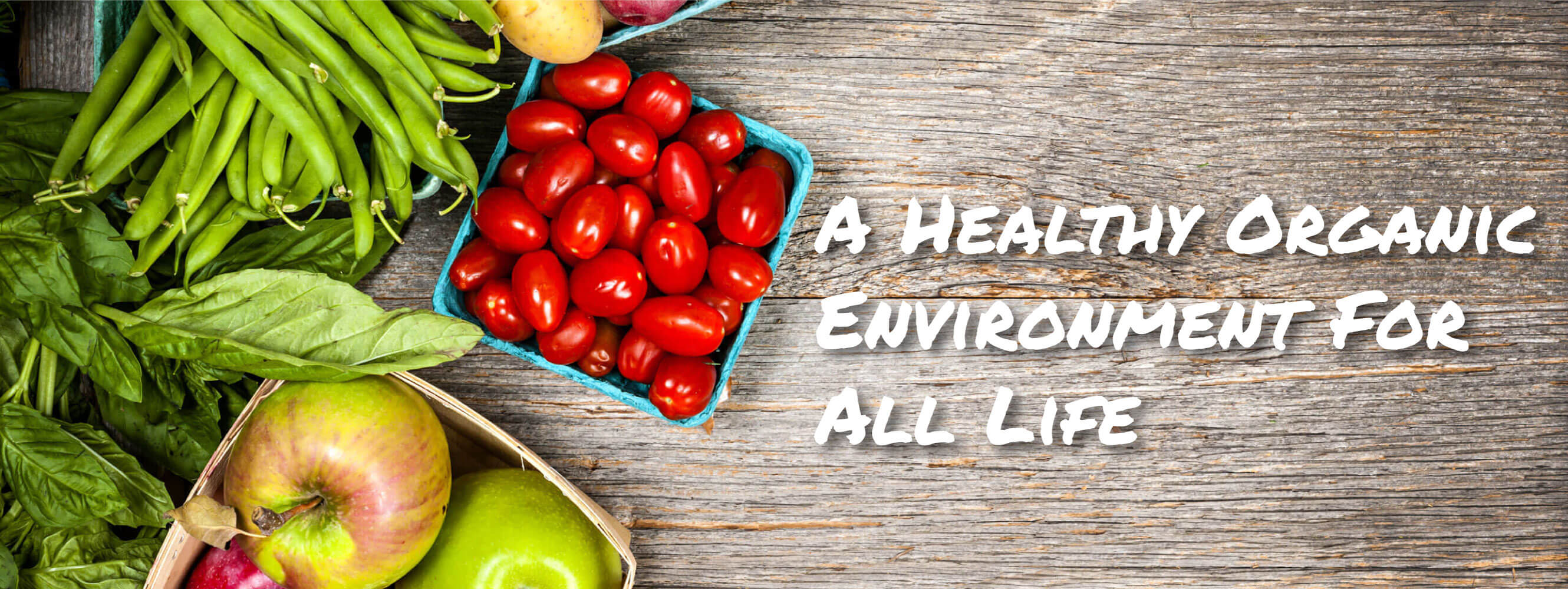 A Healthy Organic Environment for All Life