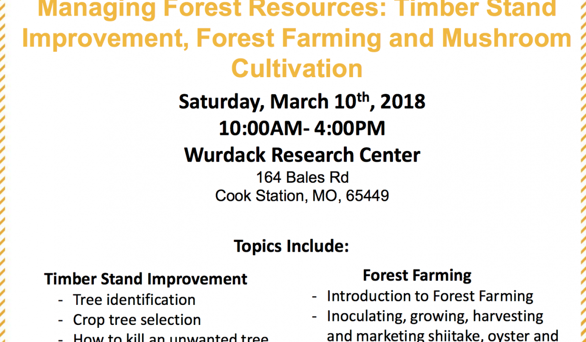 Managing Forest Resources Workshop Feature