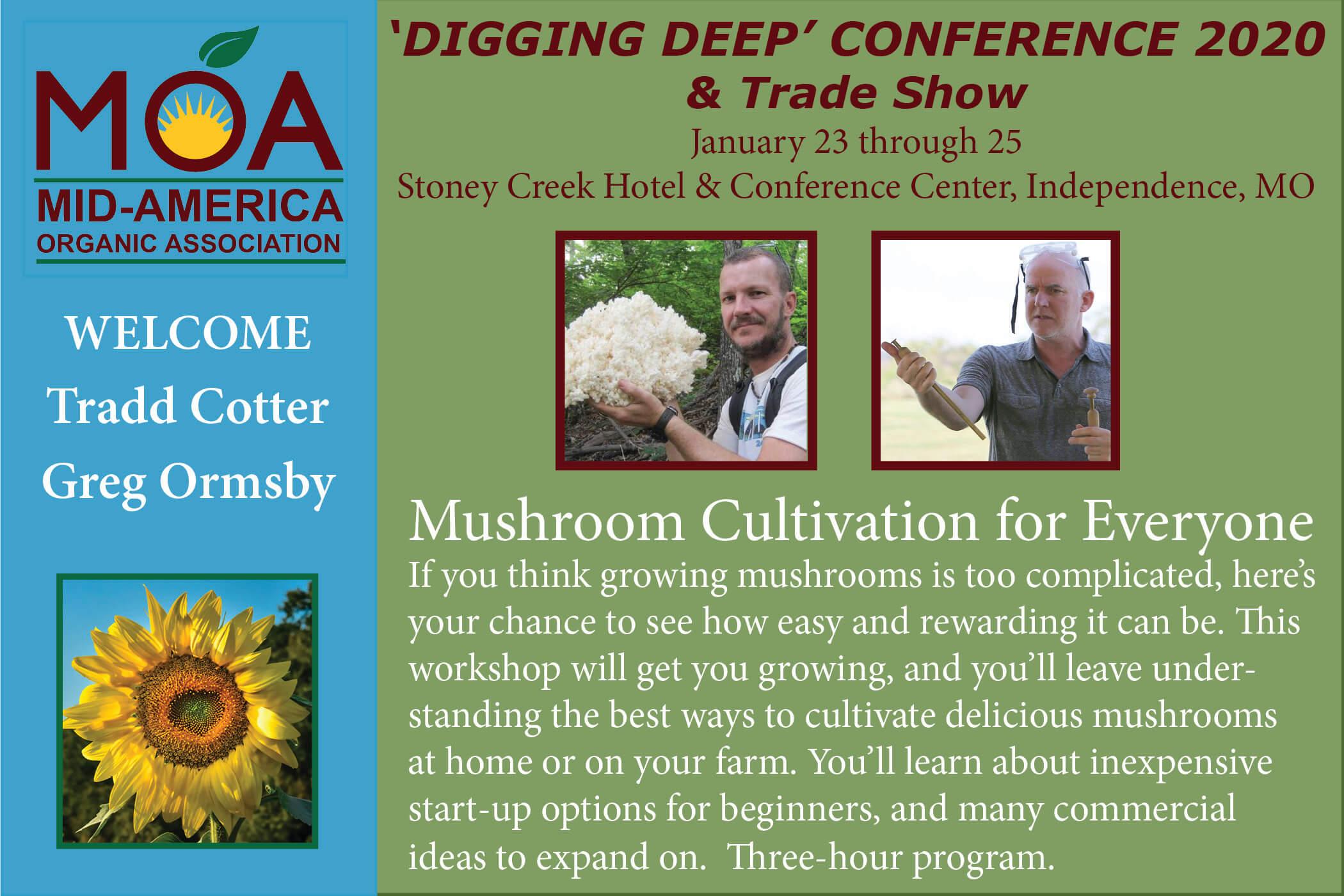 Mushroom Intensive