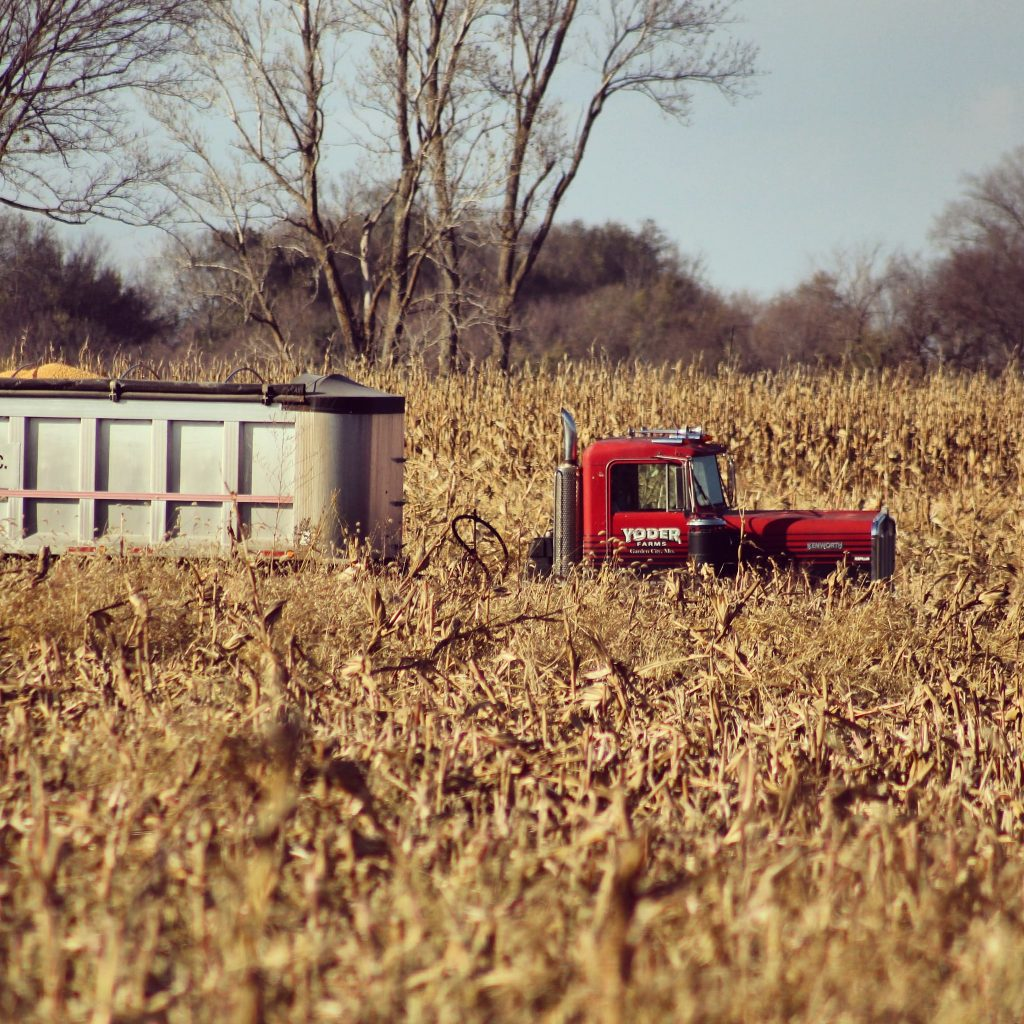 Missouri Organic Farm Feature: Five Star Family Farms - photo of a tractor in a field