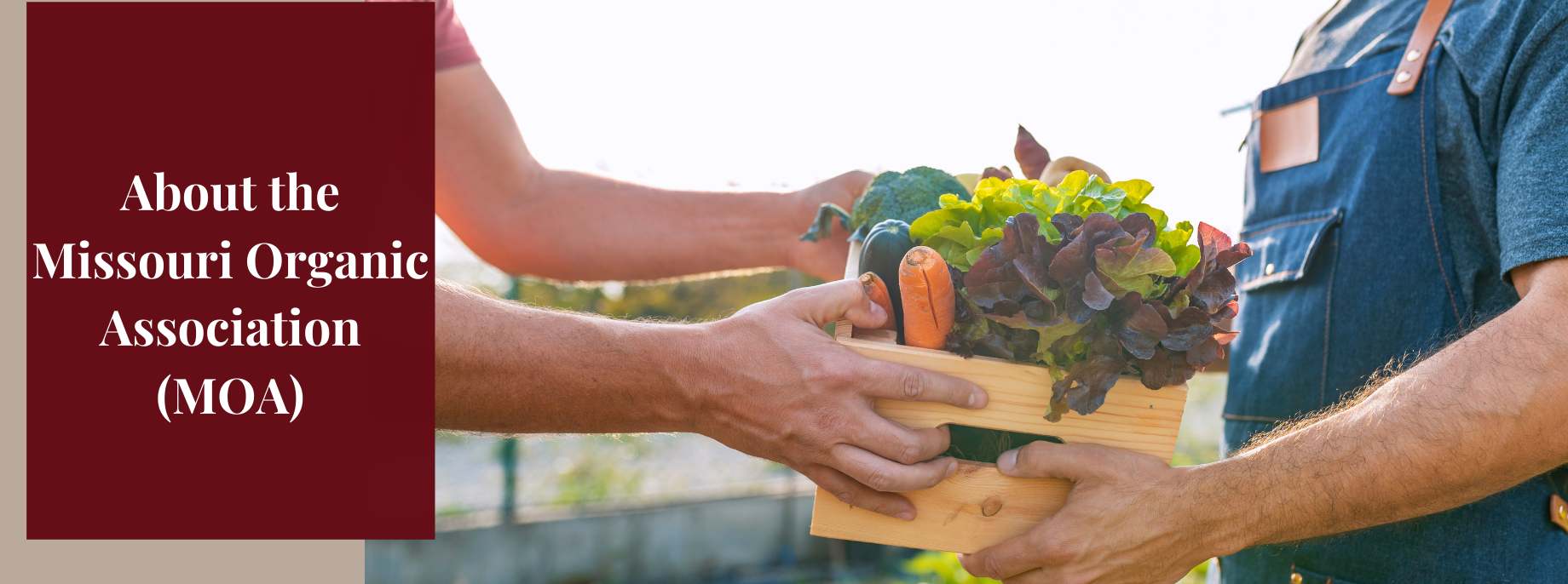 Learn about the Missouri Organic Association